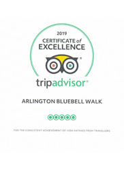 2019 Certificate of Excellence Trip Advisor