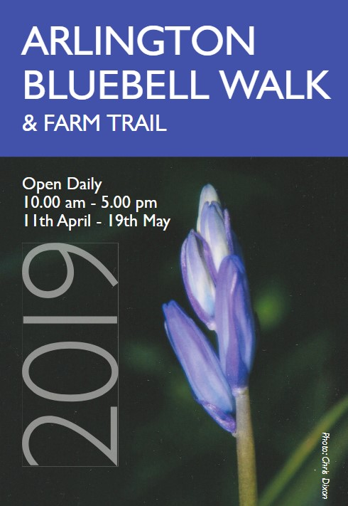 Bluebell Walk Brochure detail